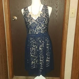 •NWT•Beautiful Francesca navy blue lacy dress